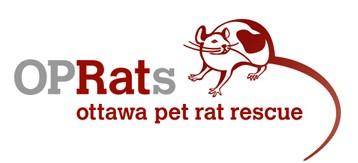 Ottawa Pet Rat Rescue